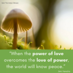 """When the power of love overcomes the love of power, the world will know peace."" Jimi Hendrix"
